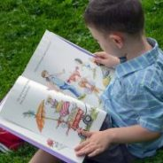 Curriculum For Emergent Readers